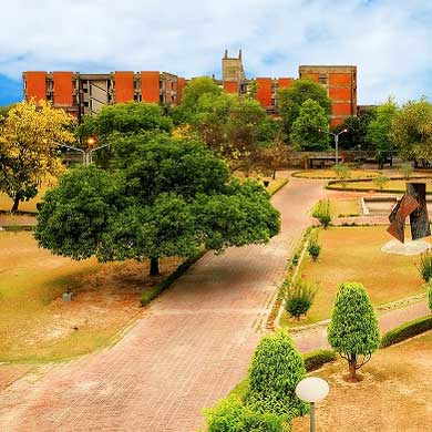 Indian Institute of Technology, Kanpur (IIT – K)